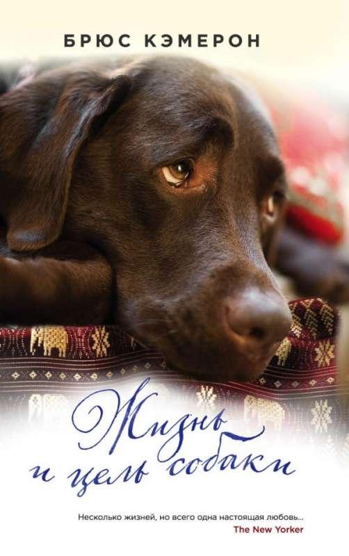 МИНИ: Жизнь и цель собаки