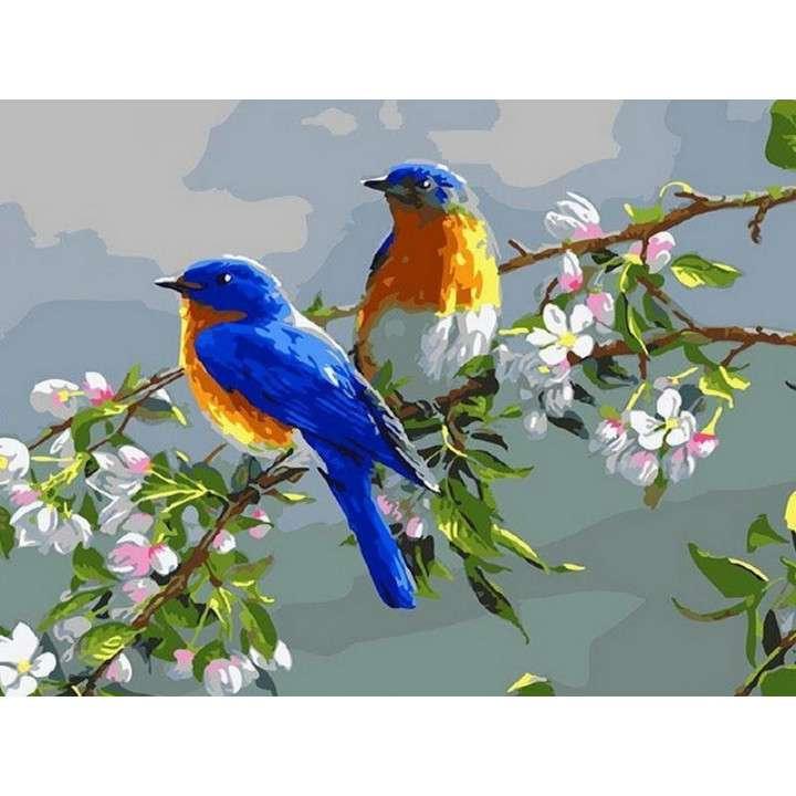 Jaunā mākslinieka komplekts (20х30) Pavasara putni (15 krāsas)