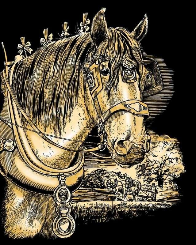 Комплект для творчества GOLD SHIRE HORSE
