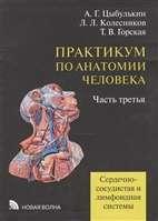 Практикум по анатомии человека. В 4-х частях. Часть 3. Сердечно-сосудистая и лимфоидная системы